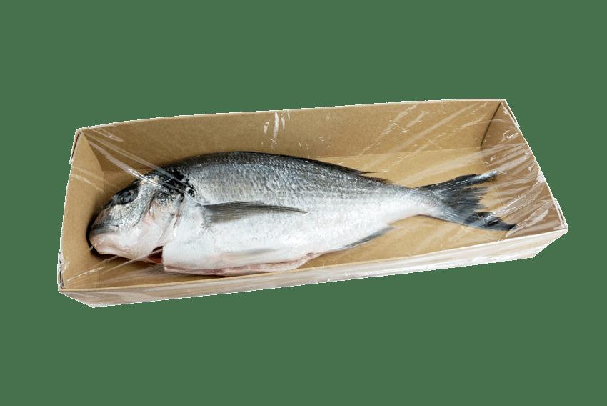 Fischtassen, Fleischtassen aus Karton