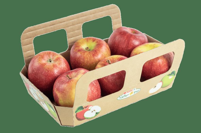 6er Apfelschale aus Karton befüllt