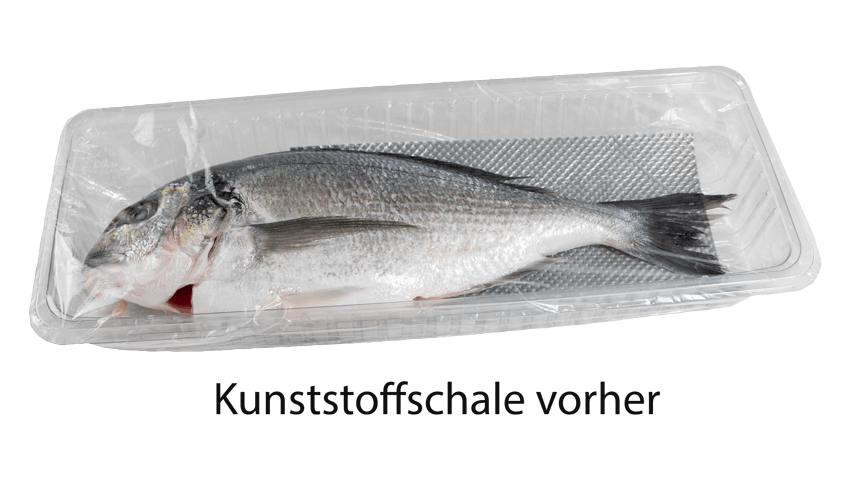 Plastikschale für Fisch