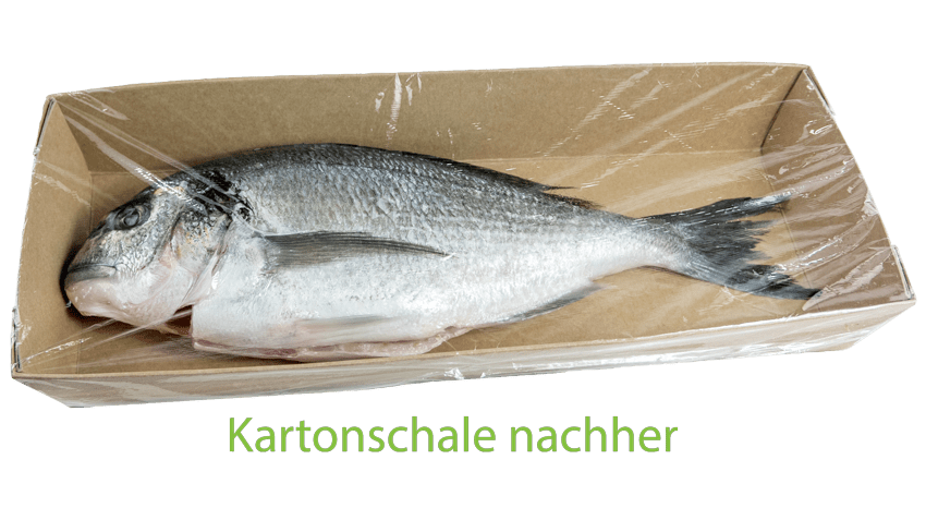 umweltfreundliche Verpackung für Fisch