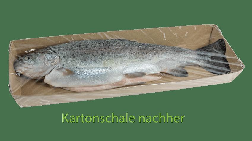 Nachhaltige Kartonschale für Fisch