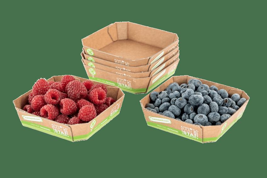 Kartonschalen für Früchte