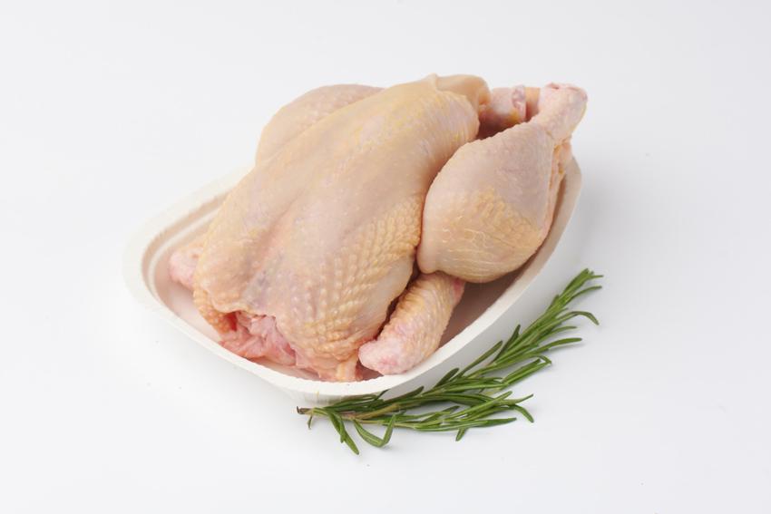 Bügelschale für Huhn aus Karton